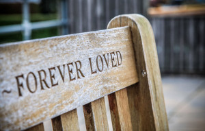 "Photo of Wooden bench with ""Forever Loved"" carved in back"