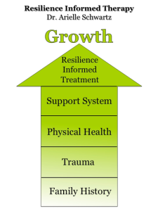 Dr. Arielle Schwartz Resilience informed therapy