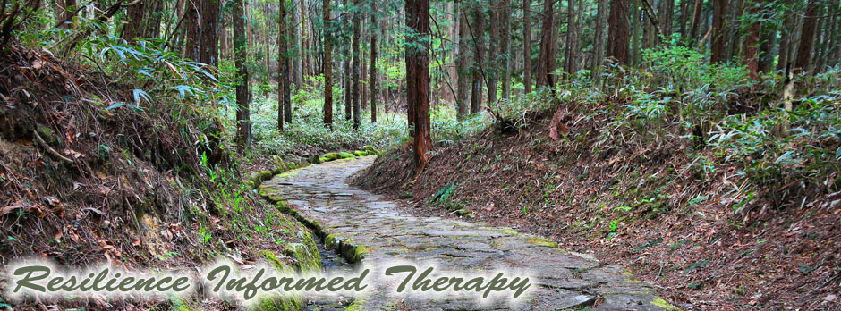 Resilience informed therapy dr arielle schwartz