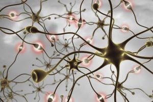Mind-Body Medicine Dr. Arielle Schwartz