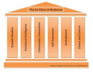 6 Pillars of Resilience Dr. Arielle Schwartz