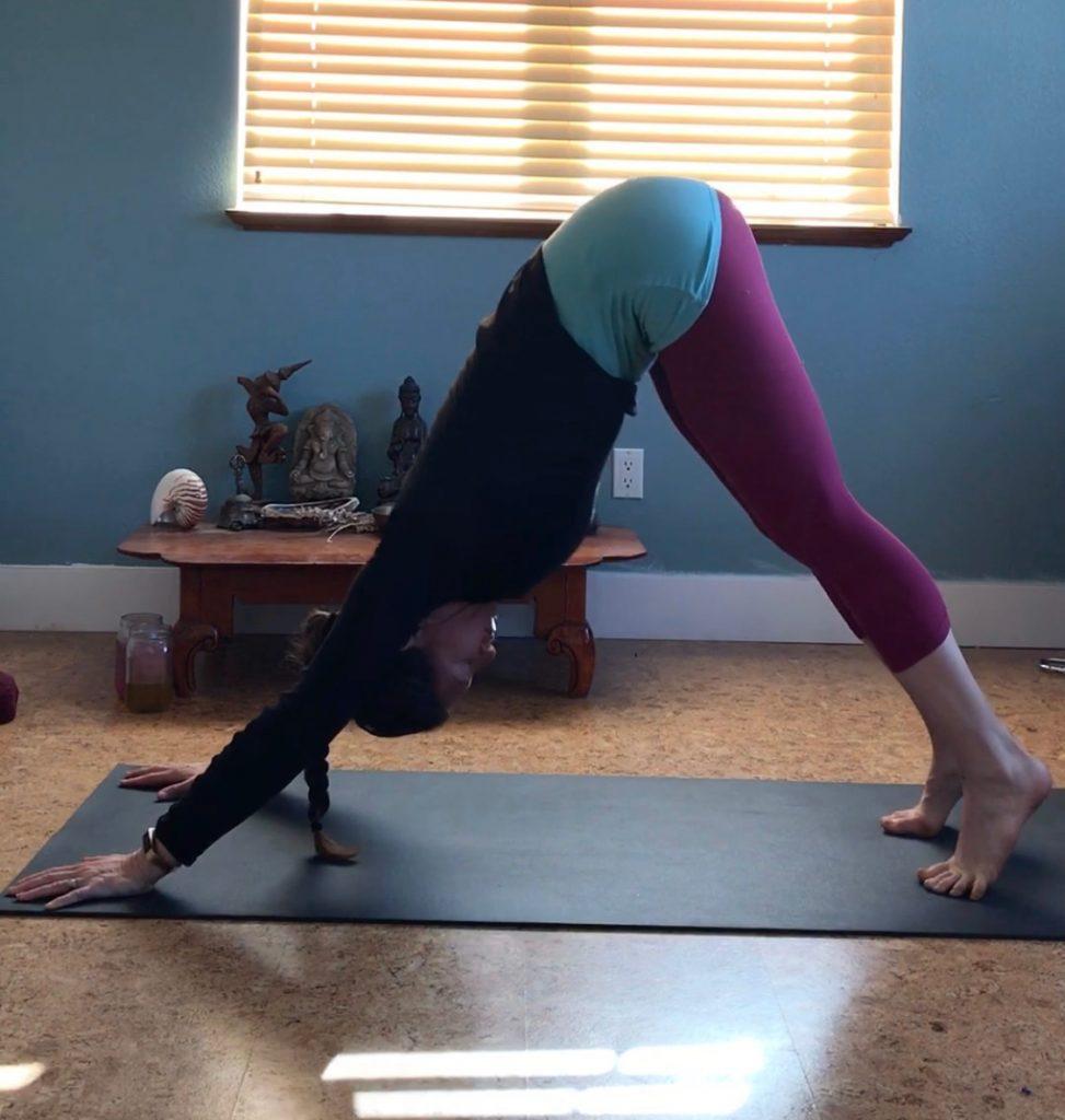 Dr. Arielle Schwartz Embodied Yoga Summit