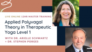 applied polyvagal theory in yoga certification